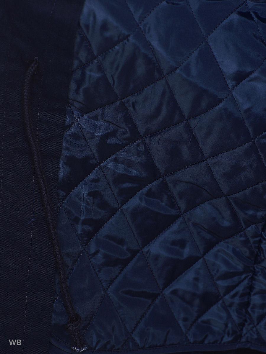 adidas | синий Парка | Clouty