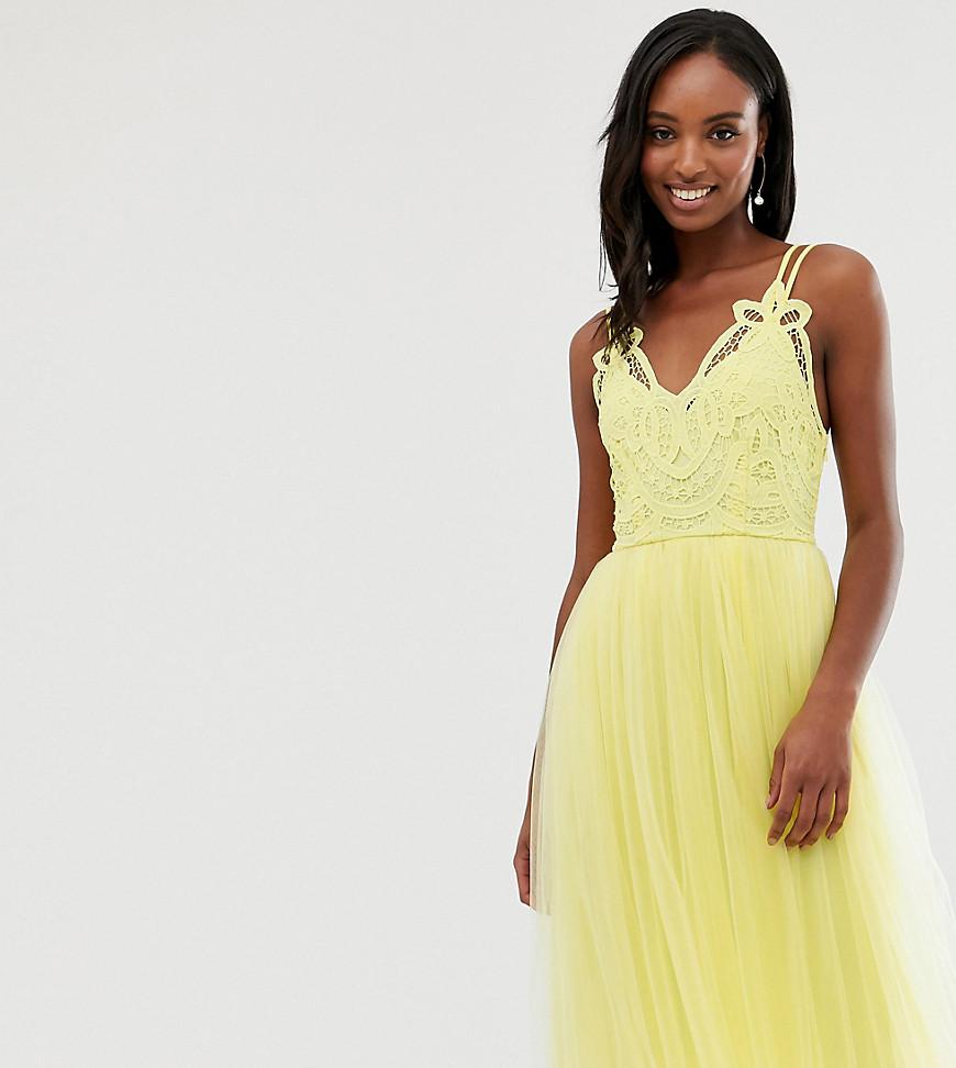 ASOS   Платье миди с кружевным верхом ASOS DESIGN Tall Premium - Желтый   Clouty