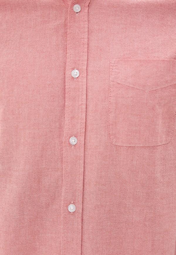 Cotton On | розовый Рубашка Cotton On | Clouty
