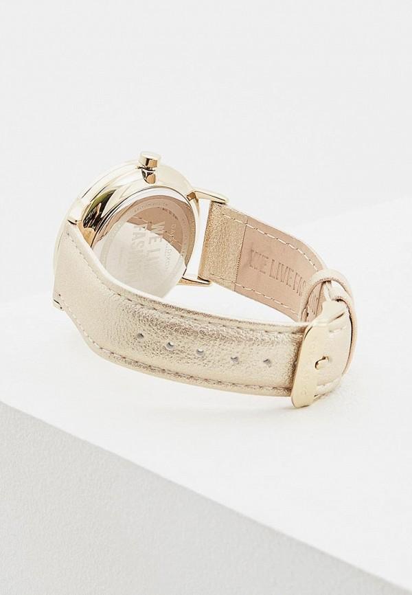 Daisy Dixon   золотой Женские золотые часы Daisy Dixon   Clouty