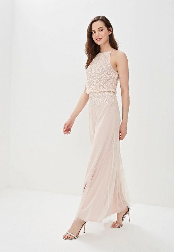 Dorothy Perkins | розовый Розовое платье Dorothy Perkins | Clouty