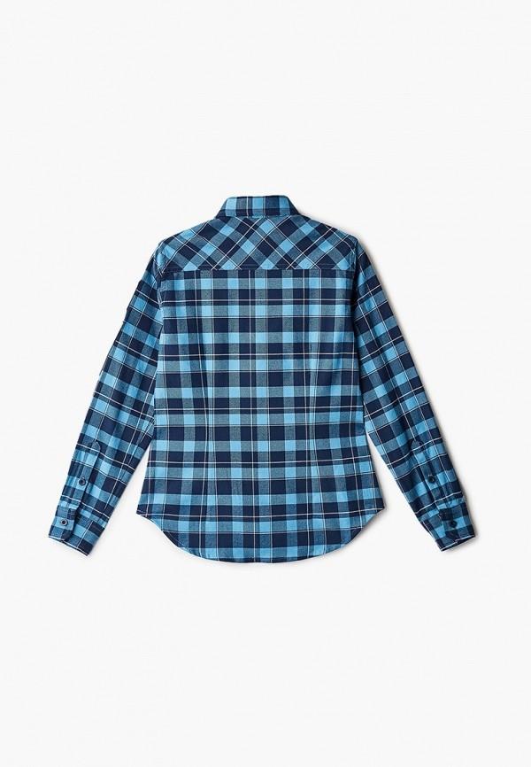 Gulliver | синий Рубашка Gulliver | Clouty