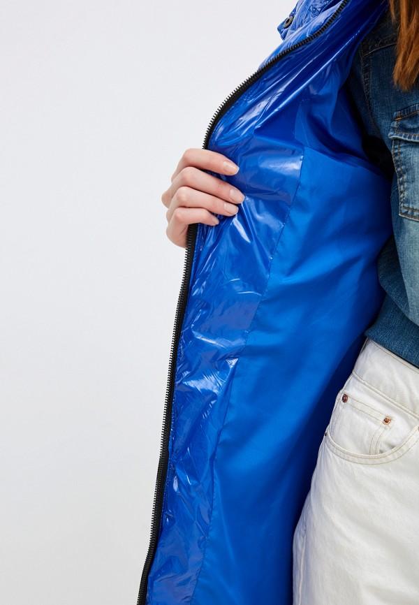 Jayloucy   синий Куртка утепленная Jayloucy   Clouty