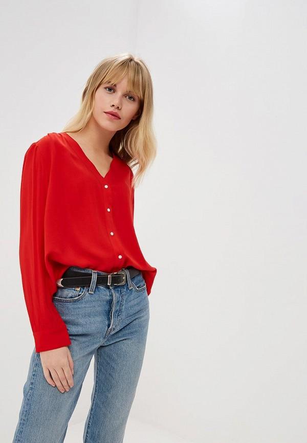 Levi's | красный Блуза | Clouty