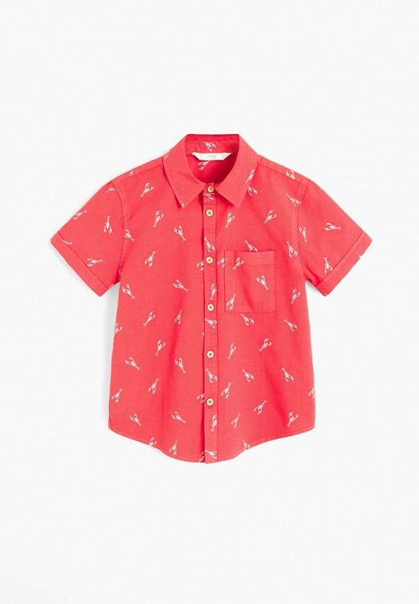 Mango Kids | красный Красная рубашка Mango Kids для мальчиков | Clouty