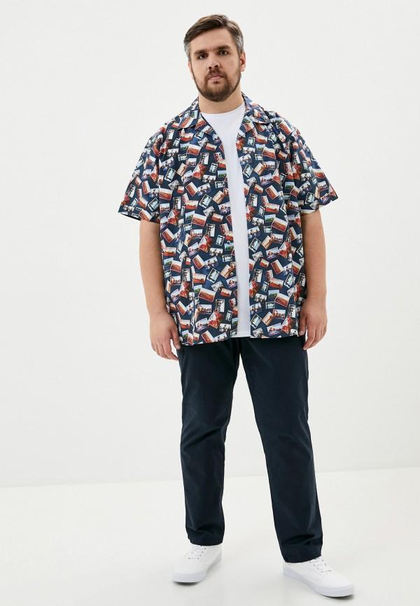 Maxfort | синий Рубашка Maxfort | Clouty