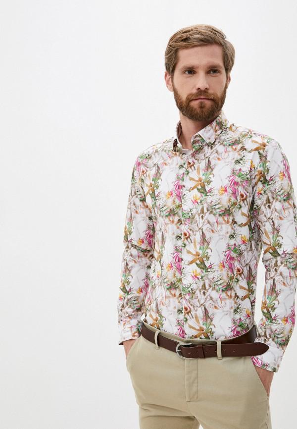 Enrico Cerini | разноцветный Рубашка Enrico Cerini | Clouty