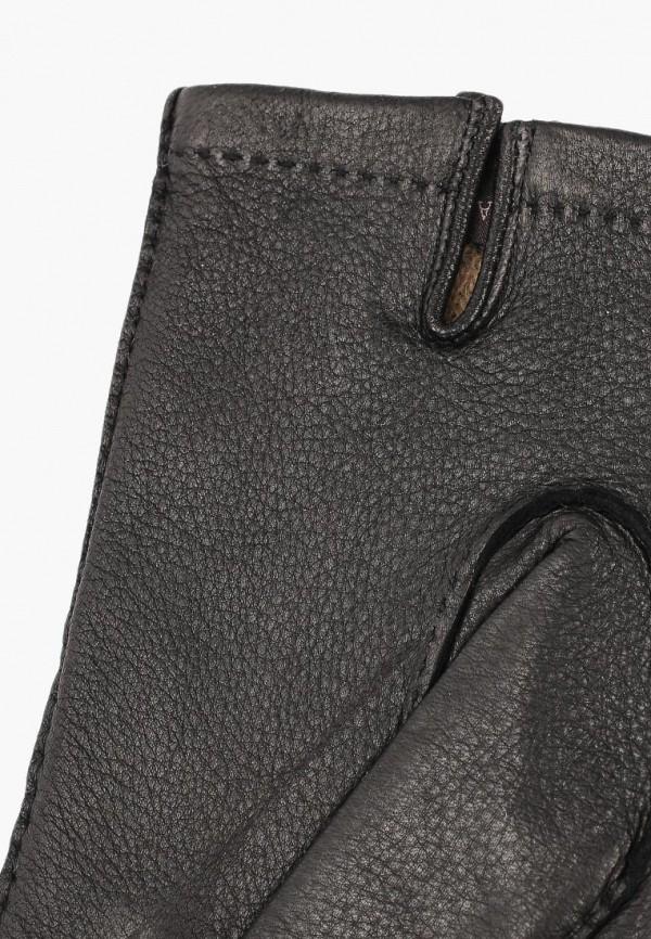 Eleganzza | черный Мужские зимние черные перчатки Eleganzza | Clouty