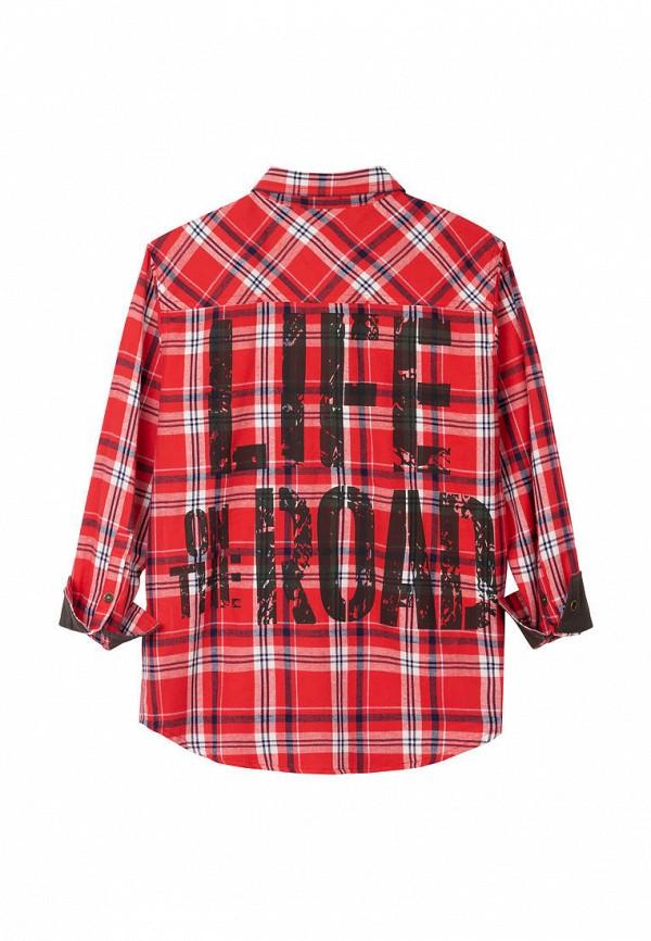 Bell Bimbo | красный Красная рубашка Bell Bimbo для мальчиков | Clouty