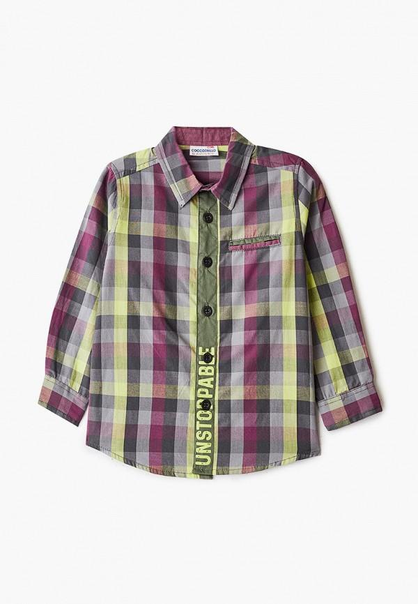Coccodrillo | мультиколор Рубашка Coccodrillo для мальчиков | Clouty