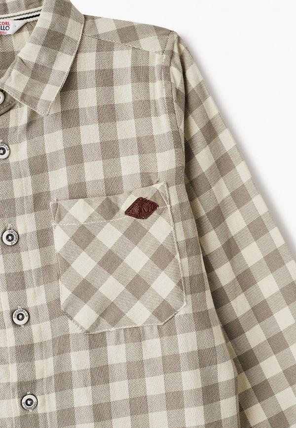 Coccodrillo | бежевый Рубашка Coccodrillo | Clouty