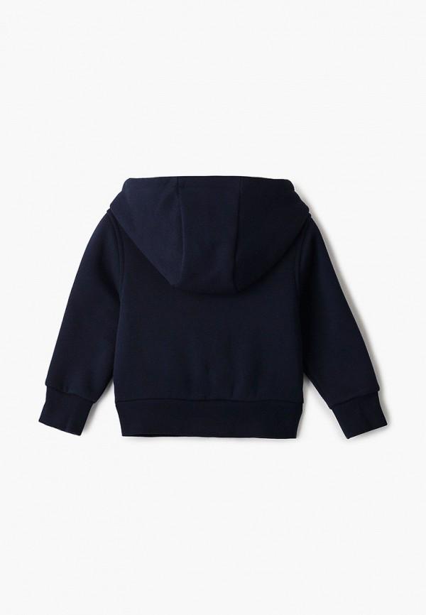 Lacoste   синий Синяя толстовка Lacoste для младенцев   Clouty