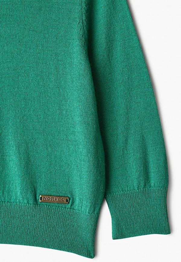 Norveg   зеленый Водолазка Norveg   Clouty