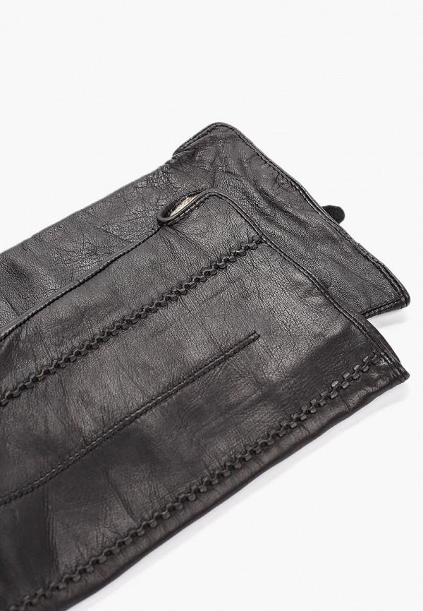 Vitacci | черный Женские зимние черные перчатки Vitacci | Clouty