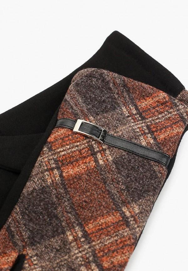 Flioraj | коричневый Перчатки Flioraj | Clouty