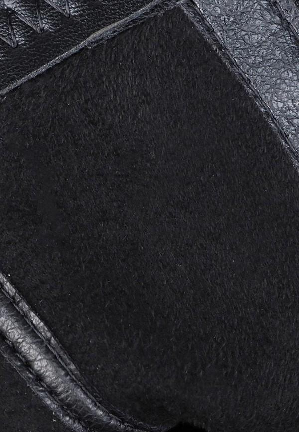 T.Taccardi | черный Женские черные полусапоги T.Taccardi кожволон | Clouty