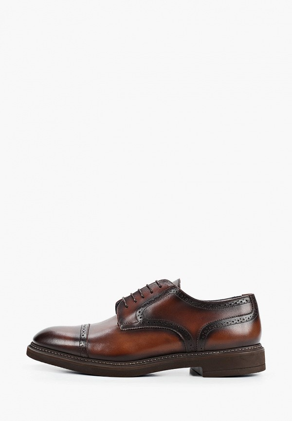 Zampiere   коричневый Мужские коричневые туфли Zampiere   Clouty