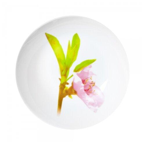 Luminarc | Luminarc Тарелка суповая Water Color 20 см белый/розовый/зеленый | Clouty