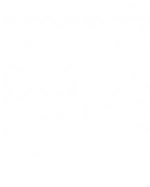 Swildens | Брюки свободного фасона из хлопка на резинке | Clouty