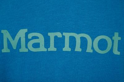 Marmot   Худи мужская Marmot   Clouty