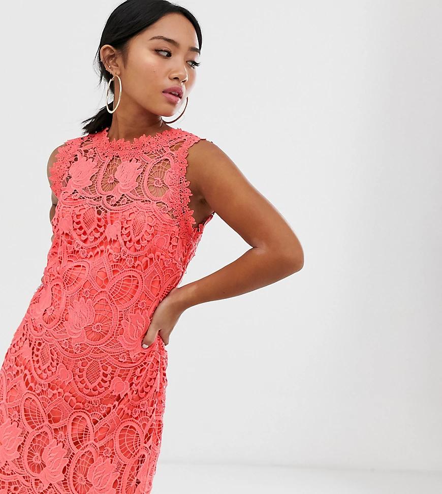 Paper Dolls | Коралловое кружевное платье-футляр с высоким воротом Paper Dolls Реtitе-Оранжевый | Clouty