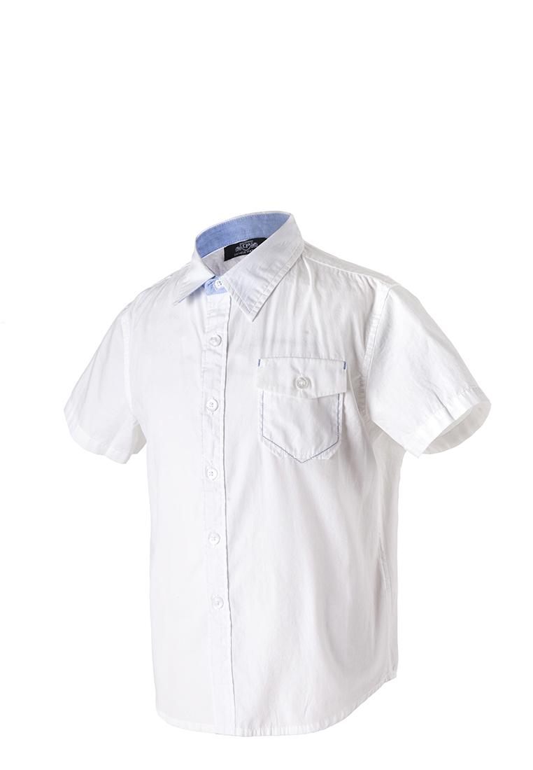 Daniele Patrici | Рубашка длинный рукав детская для мальчиков Daniele Patrici | Clouty